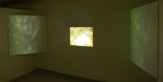 Osla-Vena, Video installation. 2005.